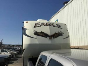 eagle picture paint on front cap